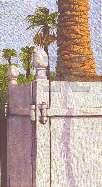 gt_rouen-palm100