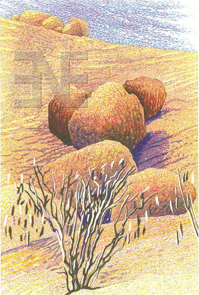 op_namibia-boulders100